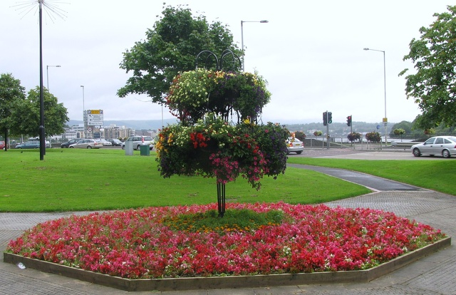 Derry - Guildhall - Flowers.jpg